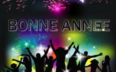 Bonne année 2015 ! ! !