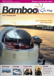 bamboo-23